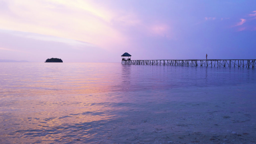 Voyage en Sulawesi