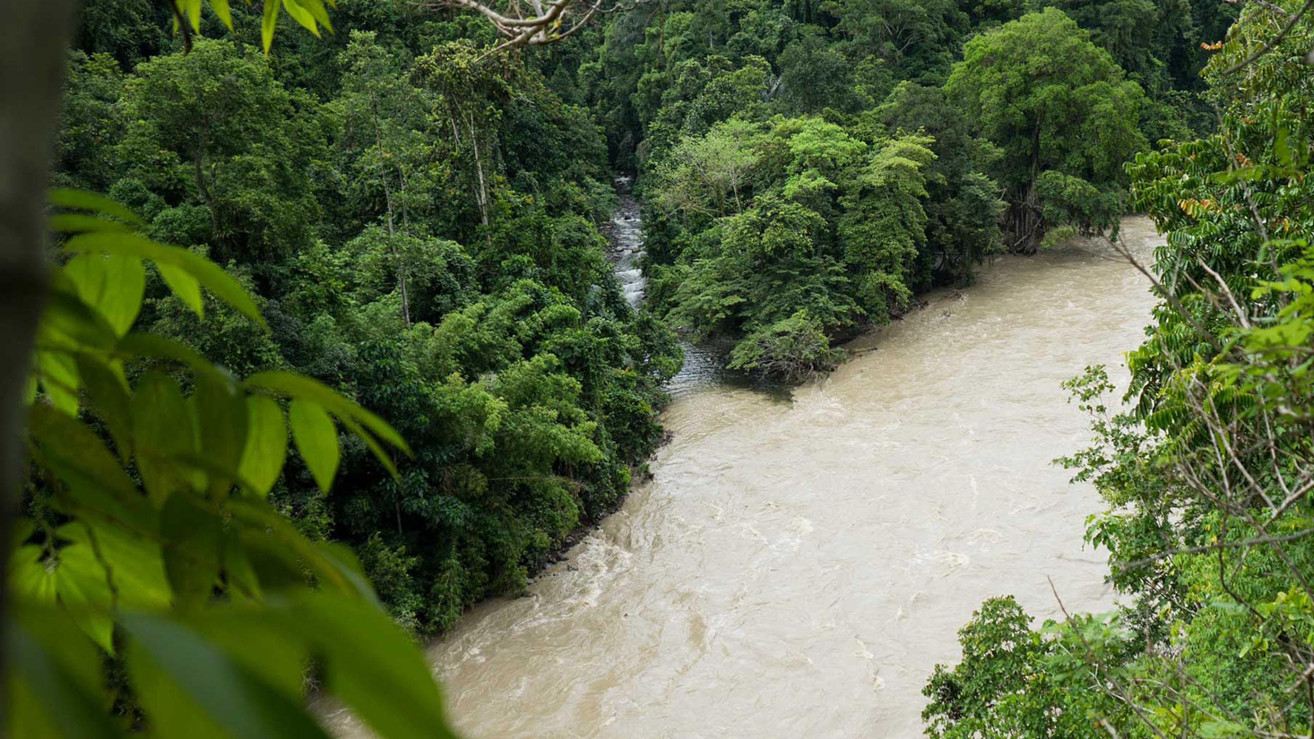 Mandara rivière lore lindu éco-tourisme indonésie