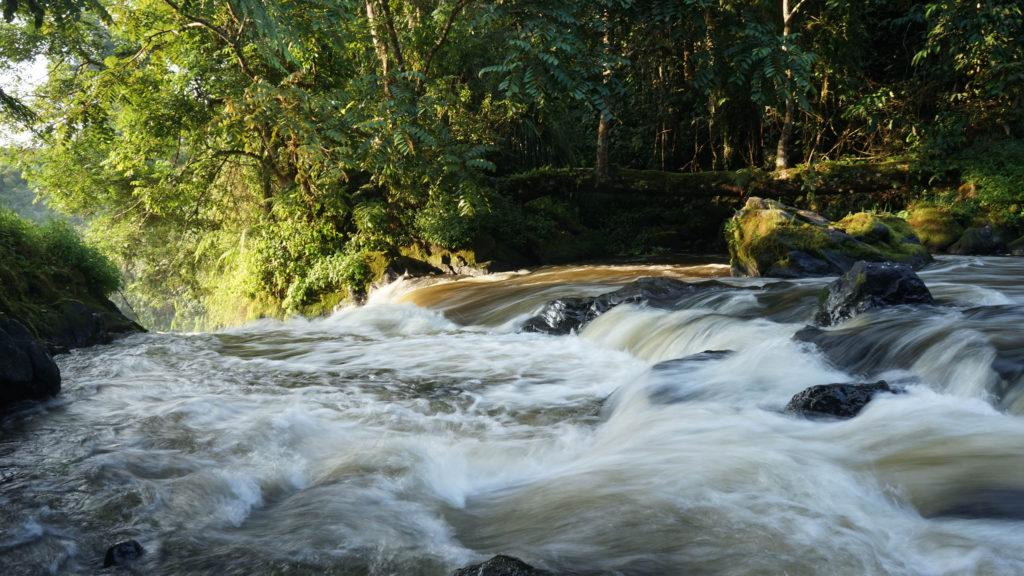 Mandara voyage nature éco-tourisme indonésie