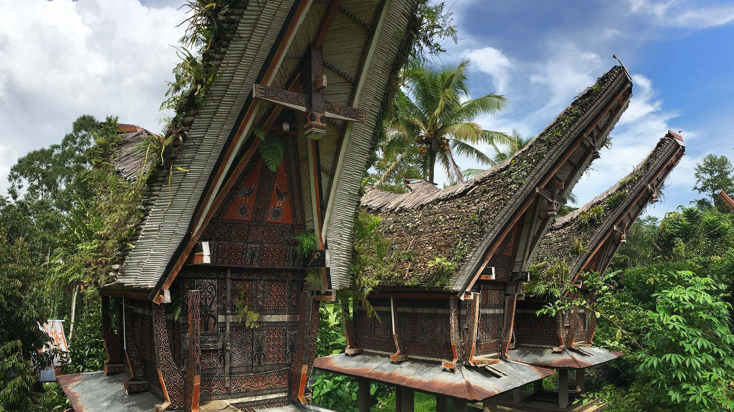 Mandara toraja éco-tourisme indonésie