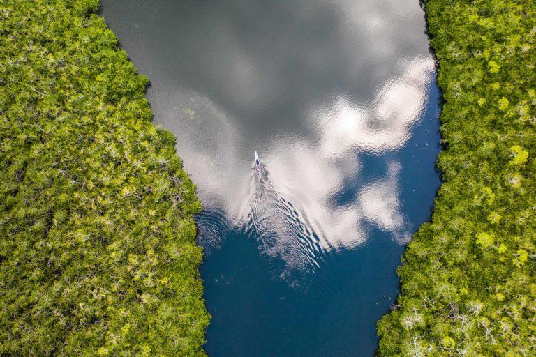 Mandara kayak éco-tourisme